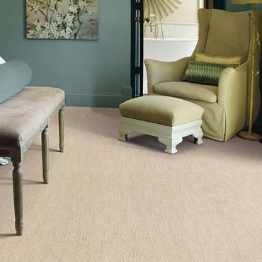 Caress Carpet by Shaw | Hackettstown, NJ