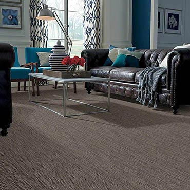 Anso® Nylon Carpet | Hackettstown, NJ